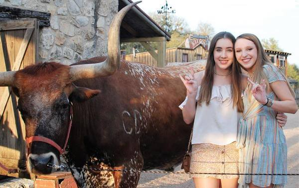 Meet and Greet with Woodrow the Texas Longhorn at Enchanted Springs Ranch
