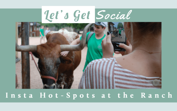 Instrammable spots at Enchanted Springs Ranch